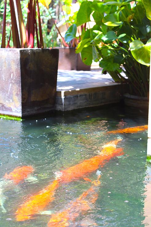 Amari Vogue Krabi Thailand Luxushotel Hotelbericht Review Reiseblog Kois Hotelanlage