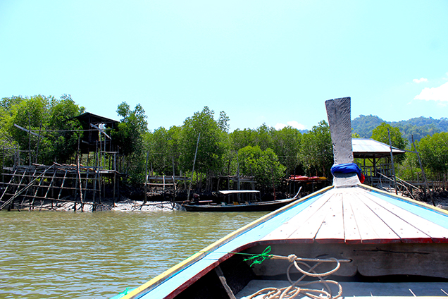 Koh_Lanta_Sightseeing_Sehenswürdigkeiten_Reiseblog_Mangroven_Sümpfe_Longtailboot