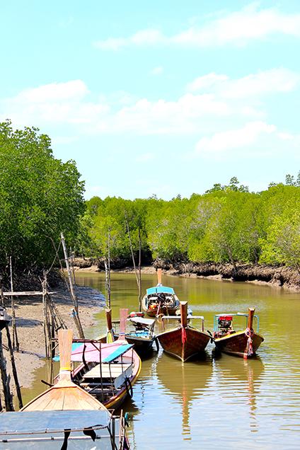 Koh_Lanta_Sightseeing_Sehenswürdigkeiten_Reiseblog_Mangroven_Sümpfe_Thailand