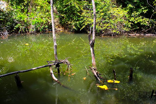 Koh_Lanta_Sightseeing_Sehenswürdigkeiten_Reiseblog_Wasserfall_Nationalpark 2