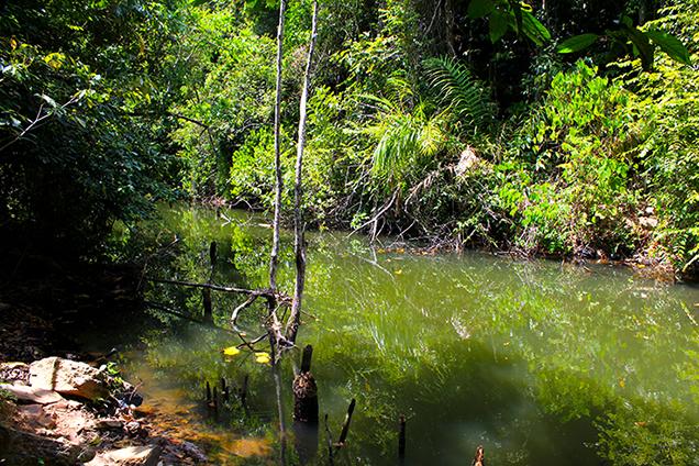 Koh_Lanta_Sightseeing_Sehenswürdigkeiten_Reiseblog_Wasserfall_Nationalpark