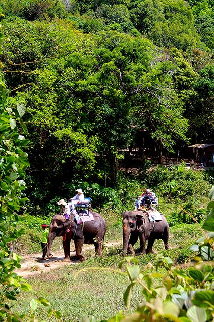 Koh_Lanta_Sightseeing_Sehenswürdigkeiten_Reiseblog_Wasserfall_Nationalpark_Elefanten_reiten