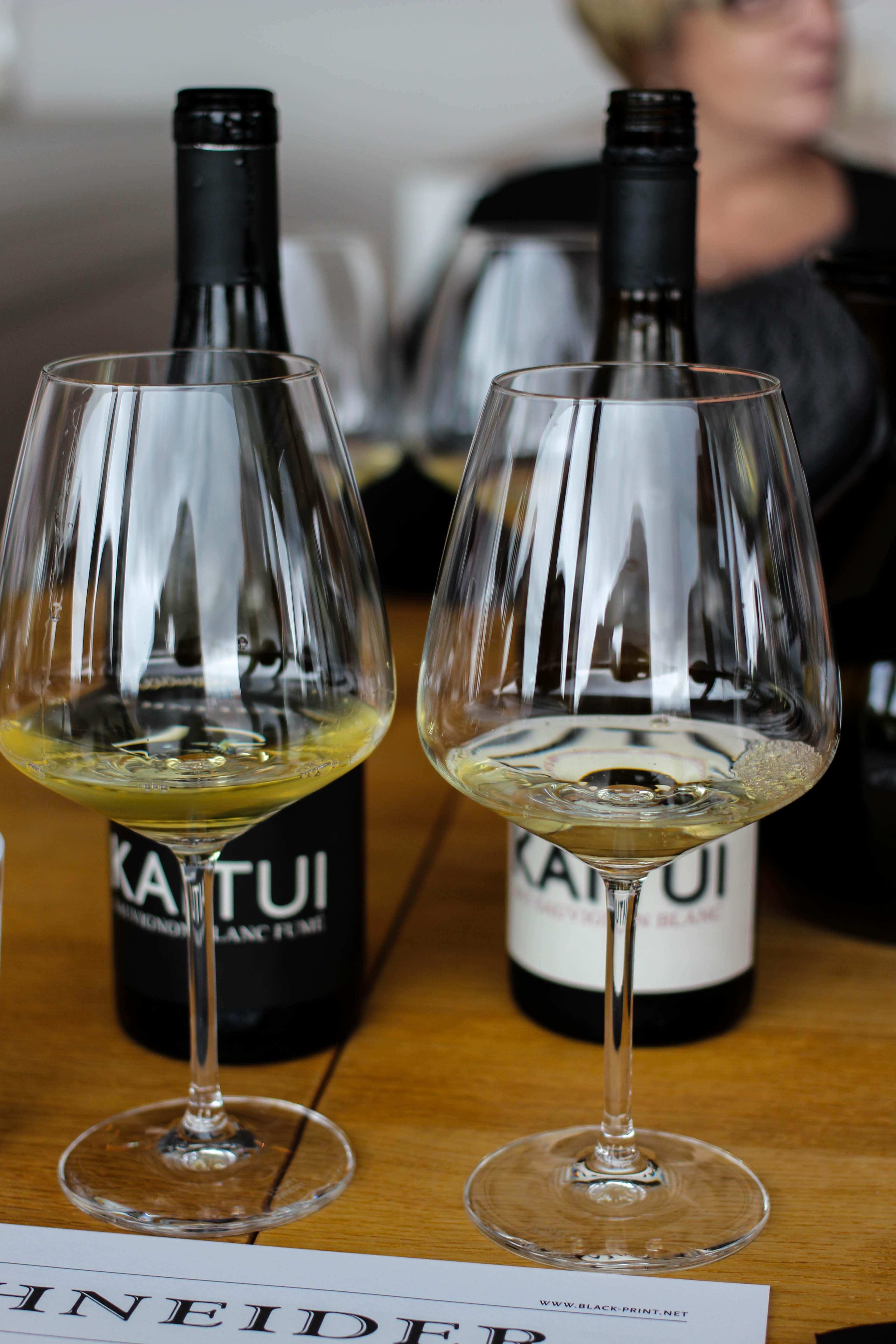 Mercure Weinlese Reiseblog Weißwein KAITUI Weingut Markus Schneider