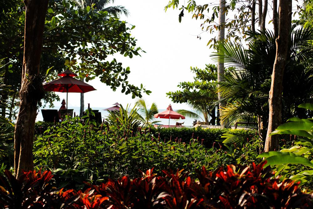 Chivapuri Beach Resort Hotel Koh Chang Thailand Hotelanlage Palmen
