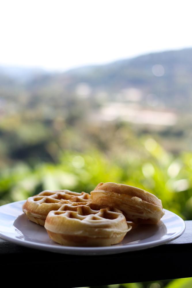 Panviman Spa Resort Luxus Hotel Chiang Mai Thailand Reiseblog Frühstück Waffeln