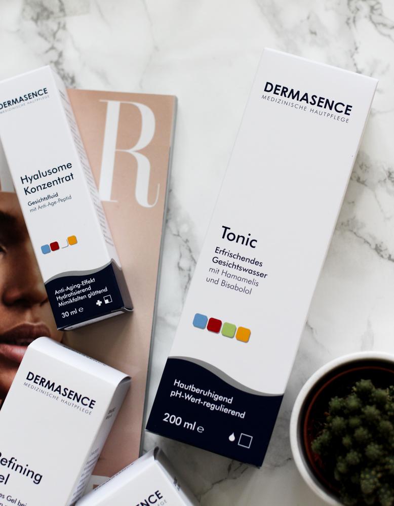 Winter Hautpflege Dermasence Tonic Gesichtswasser Beautyblog Erfahrungsbericht
