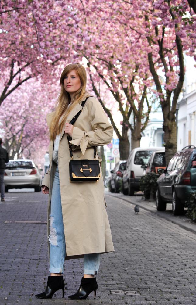 Edited Trenchcoat MOM Jeans Streetstyle Blog Kirschblüten Heerstraße Bonn Outfit Prada Tasche 3