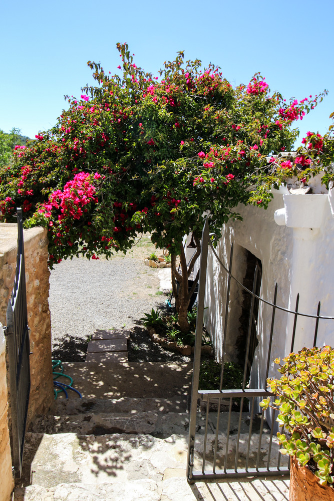 Ibiza Villa Typico San Miguel Traumvilla OneVillasIbiza Schlafzimmer Aussicht Travelblog Ibiza Finca 2