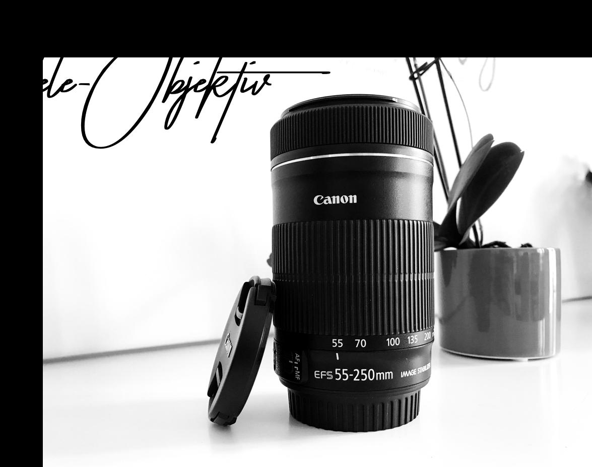 Fashion_Blog_Köln_Kamera_Equipment_Objektiv_55_bis_250_mm_Telezoom 1