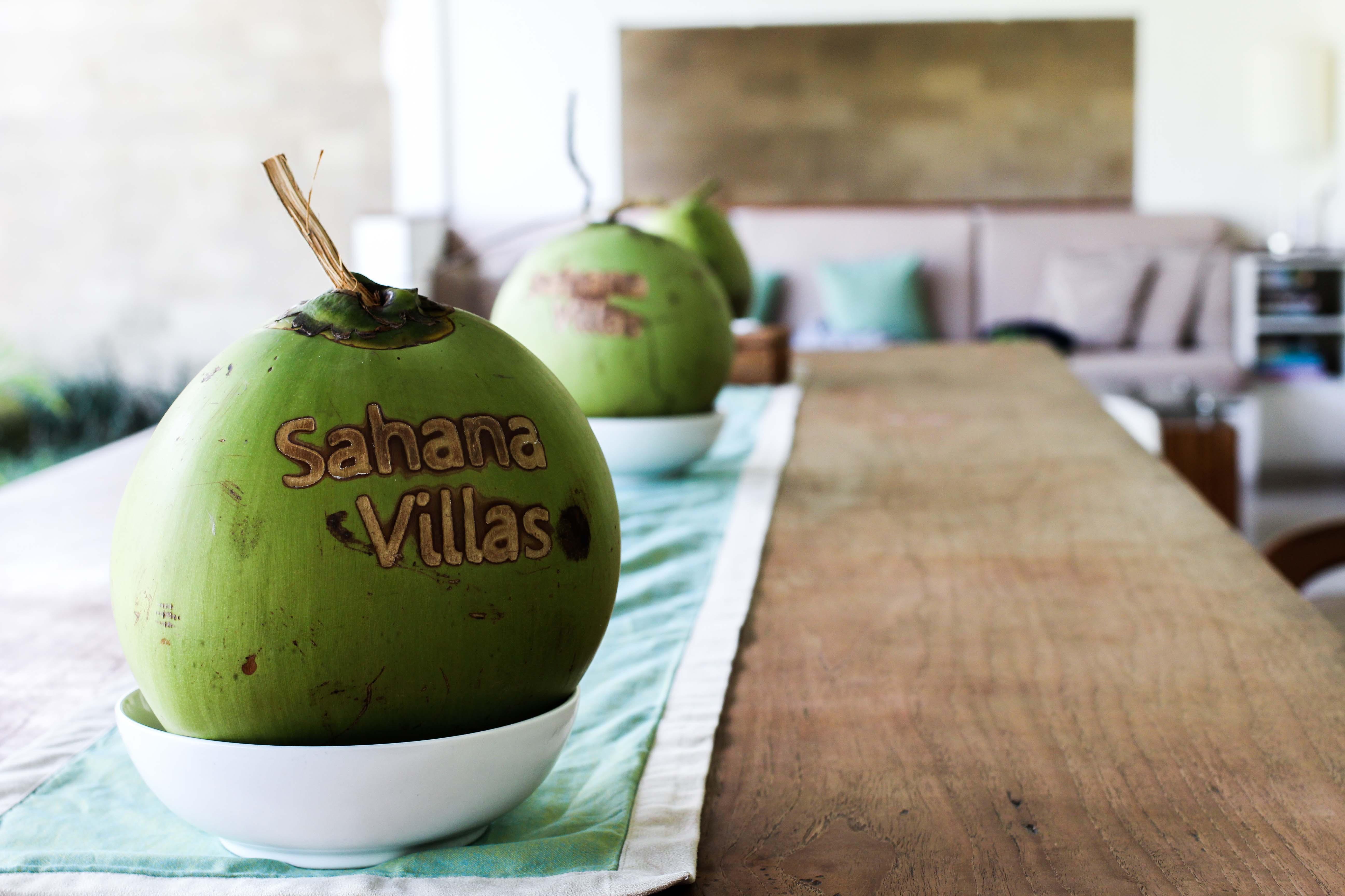 Sahana Villas Seminyak Poolvilla 3 Bedroom Seminyak Bali Luxusvilla mieten Kokosnuss Reiseblogger