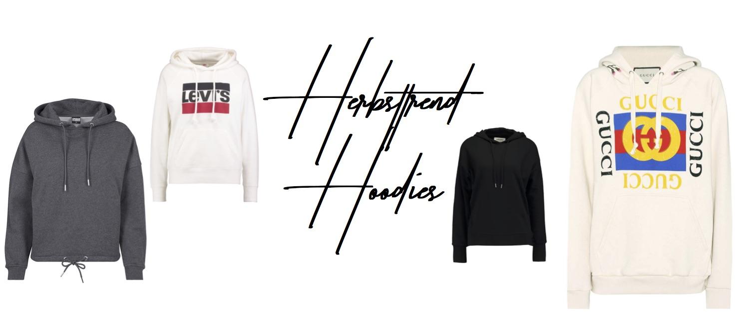 Herbsttrend 2017 kuschelig Hoodies Streetstyle Hoodies Shopping List Sweater Pullover kombinieren Modeblog