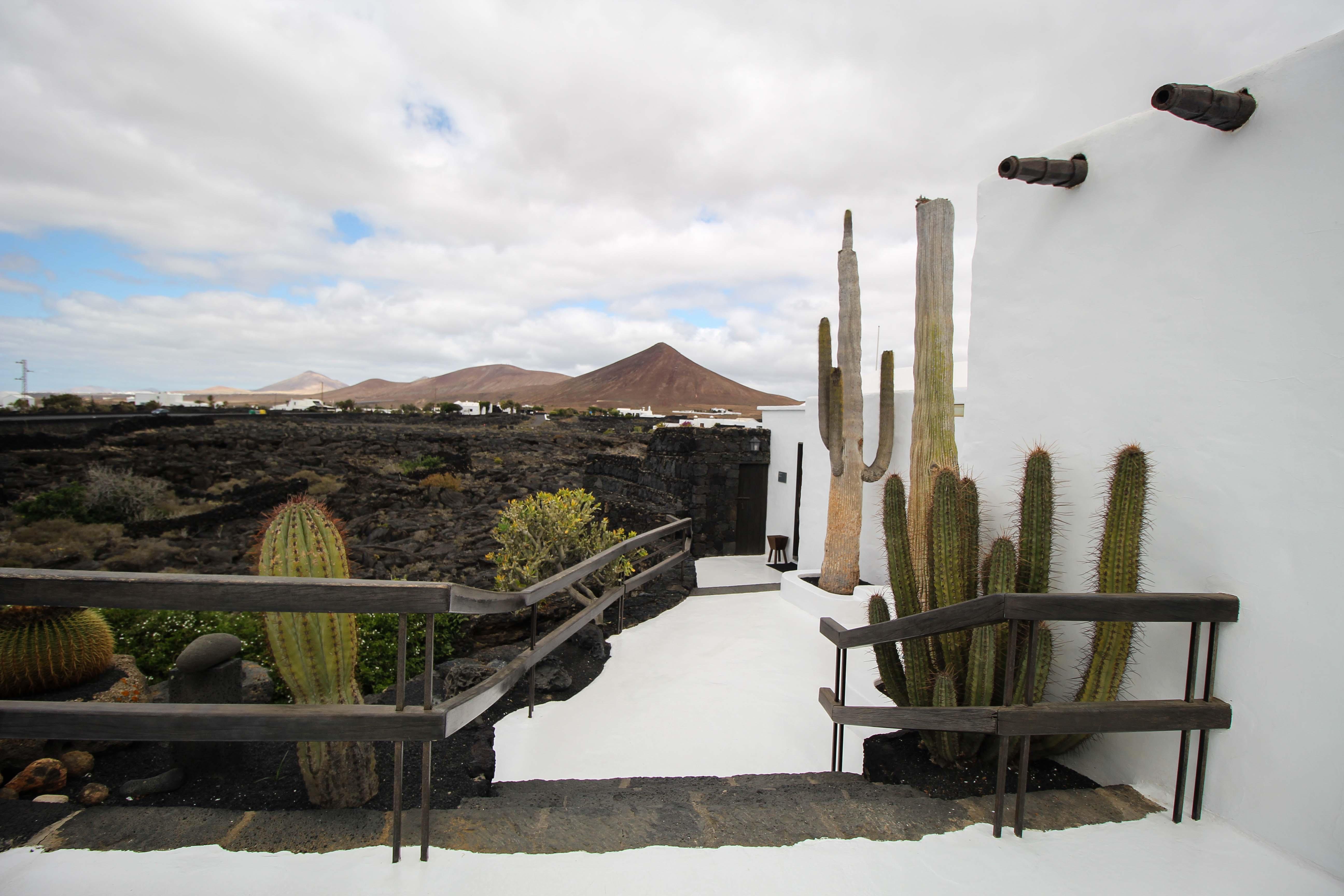 Top 10 Tipps Lanzarote Sehenswürdigkeiten Insider Tipps Lanzarote Spanien Fundación César Manrique Kaktus Lava Reiseblog