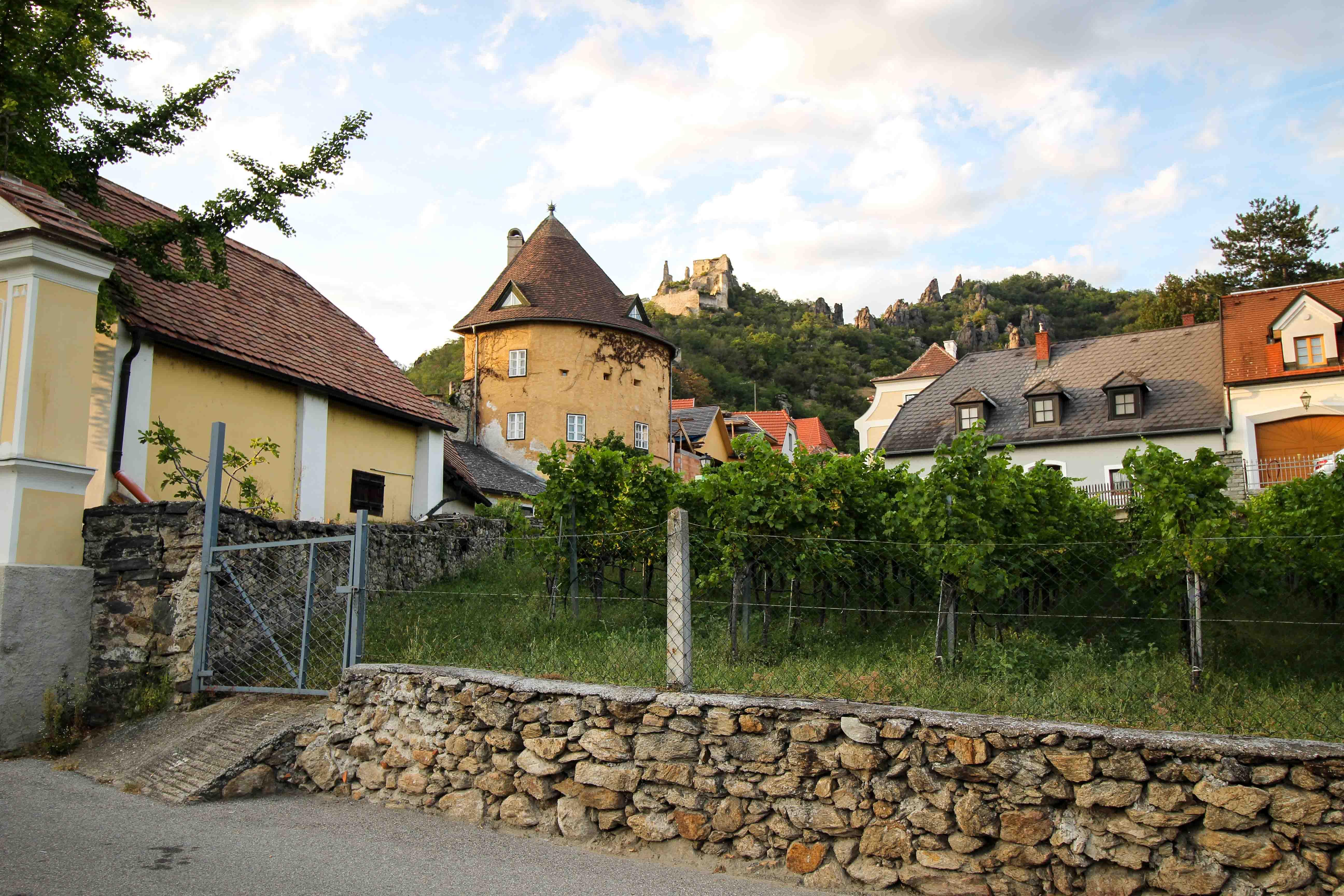Wachau Österreich Dürnstein Weinregion Insider Tipps Sehenswürdigkeiten Straßen Donaukreuzfahrt Arosa Ausblick Burg