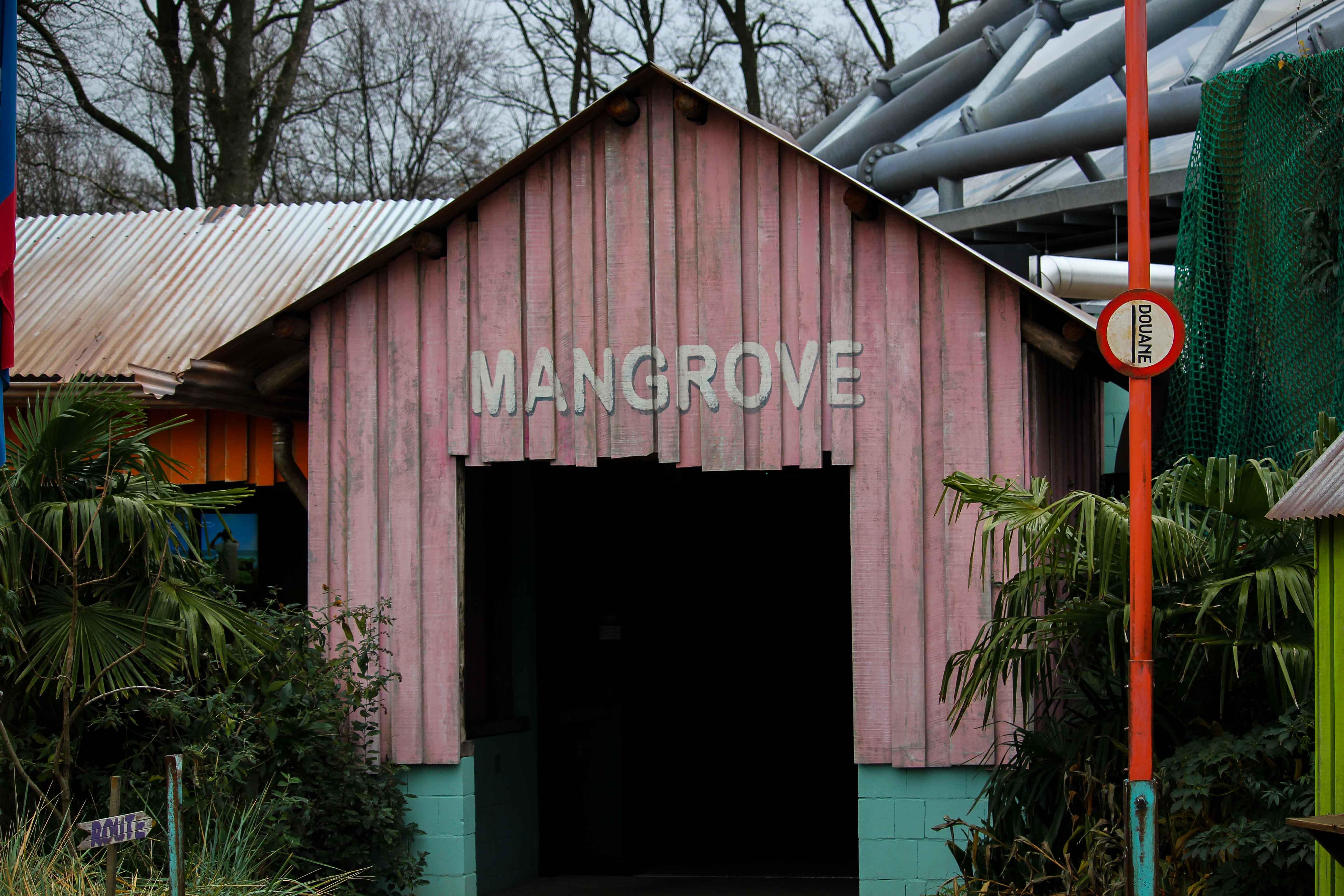 Wochenendtrip Holland das andere Holland Burgers Zoo Arnheim Mangroven Welt