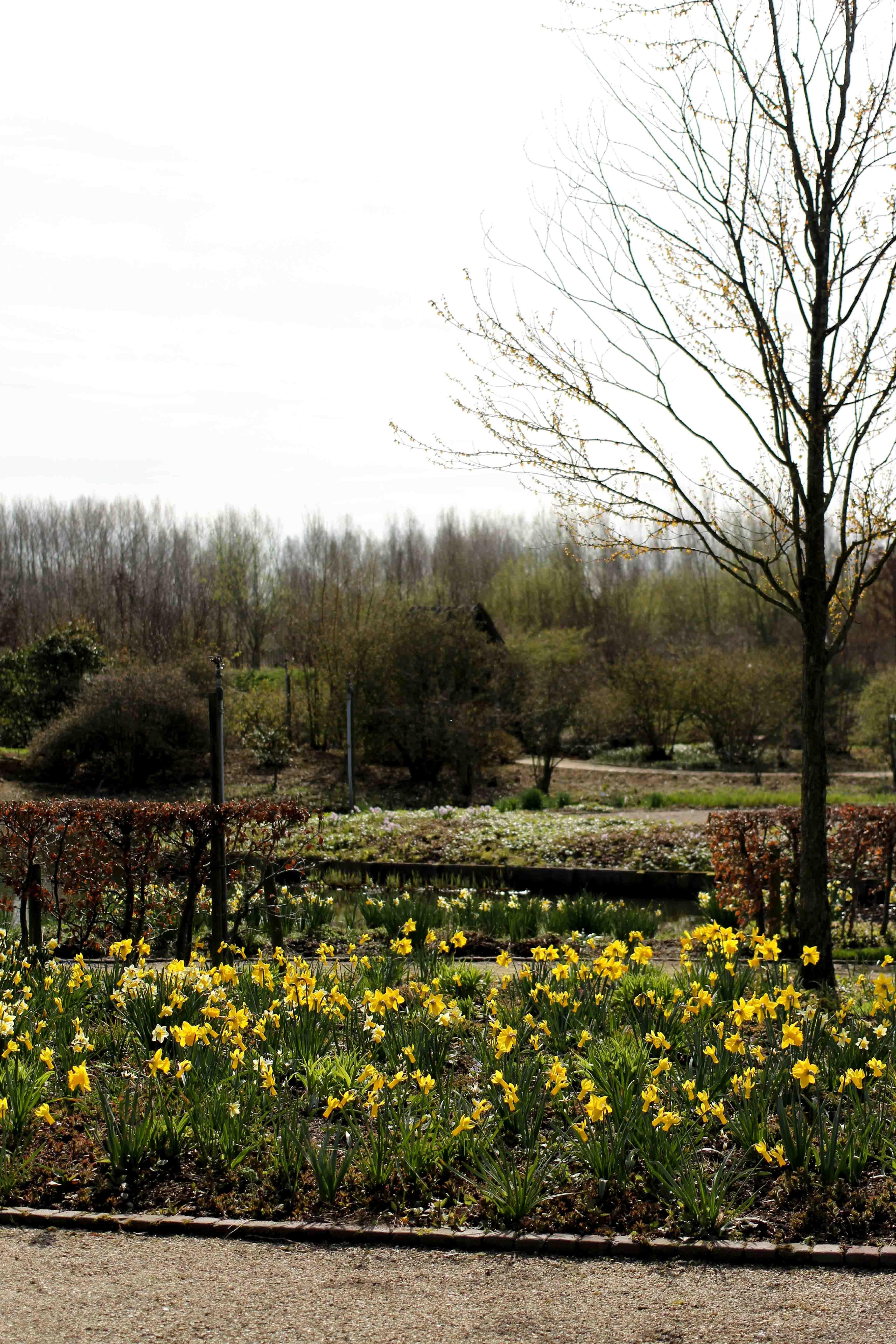 die Gärten von Appeltern Holland Wochenendtrip Tuinen van Appeltern das andere Holland Reiseblog Ausflug Deutschland Blumen