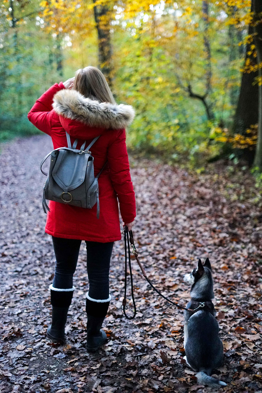 Winterstiefel Trend 2019 Wintertrends Winter Outfit Gummistiefel gefüttert wandern Hund Pomsky Kottenforst Bonn Blog 7