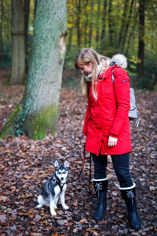 Winterstiefel Trend 2019 Wintertrends Winter Outfit Gummistiefel gefüttert wandern Hund Pomsky Kottenforst Bonn Blog 8