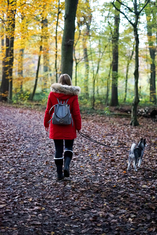 Winterstiefel Trend 2019 Wintertrends Winter Outfit Gummistiefel gefüttert wandern Hund Pomsky Kottenforst Bonn Blog 9