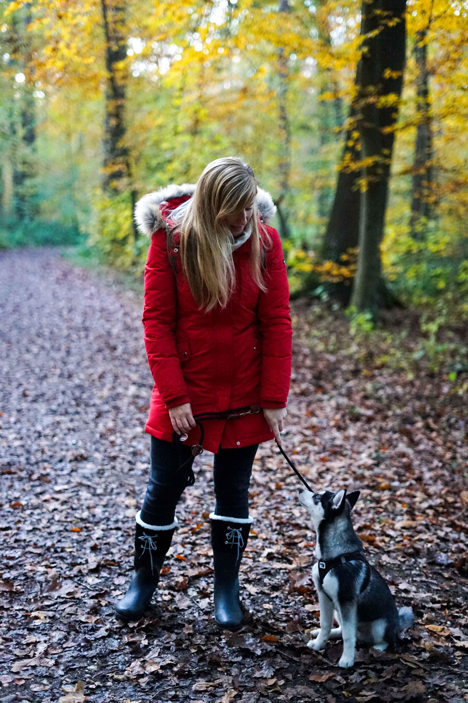 Winterstiefel Trend 2019 Wintertrends Winter Outfit Gummistiefel gefüttert wandern Hund Pomsky Kottenforst Bonn Blog 92