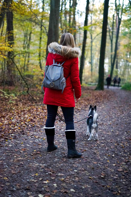 Winterstiefel Trend 2019 Wintertrends Winter Outfit Gummistiefel gefüttert wandern Hund Pomsky Kottenforst Bonn Blog 93
