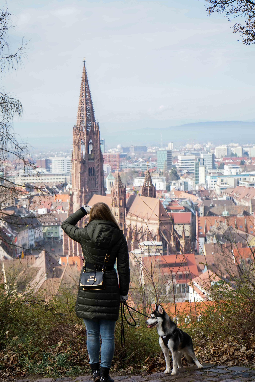 Freiburg Breisgau Reiseblog Sightseeing Dom Kanonenplatz Schlossberg Wandern