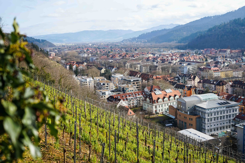 Freiburg Breisgau Reiseblog Sightseeing Dom Kanonenplatz Schlossberg Wandern 3