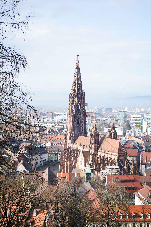 Freiburg Sehenswürdigkeiten Freiburger Münster Schlossbergturm Spazieren Natur Wanderung Reiseblog Freiburg Tipps