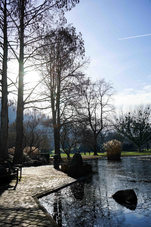 Freiburg Sehenswürdigkeiten Wochenendtrip Freiburg Stadtgarten Natur Wanderung Reiseblog Freiburg Tipps 6