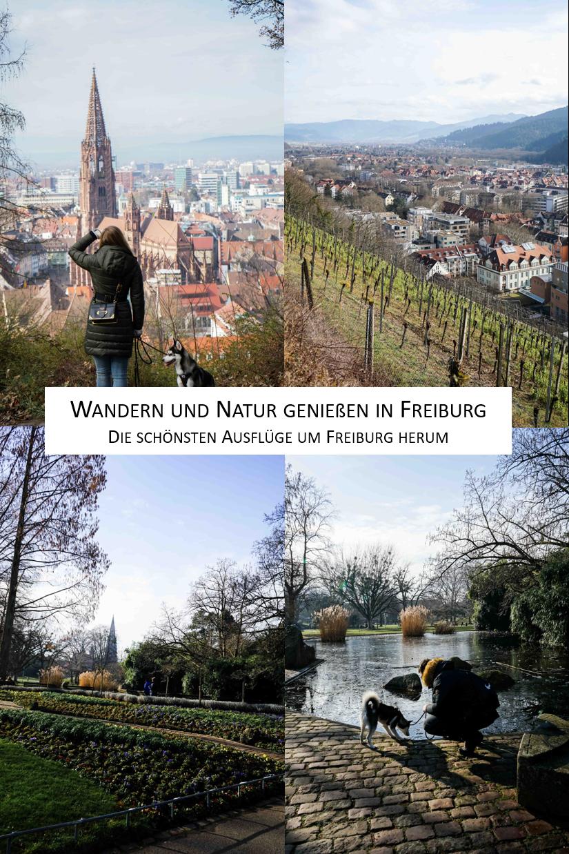 Wandern Freiburg Natur Tipps Ausflüge Freiburg Stadtgarten Reiseblog