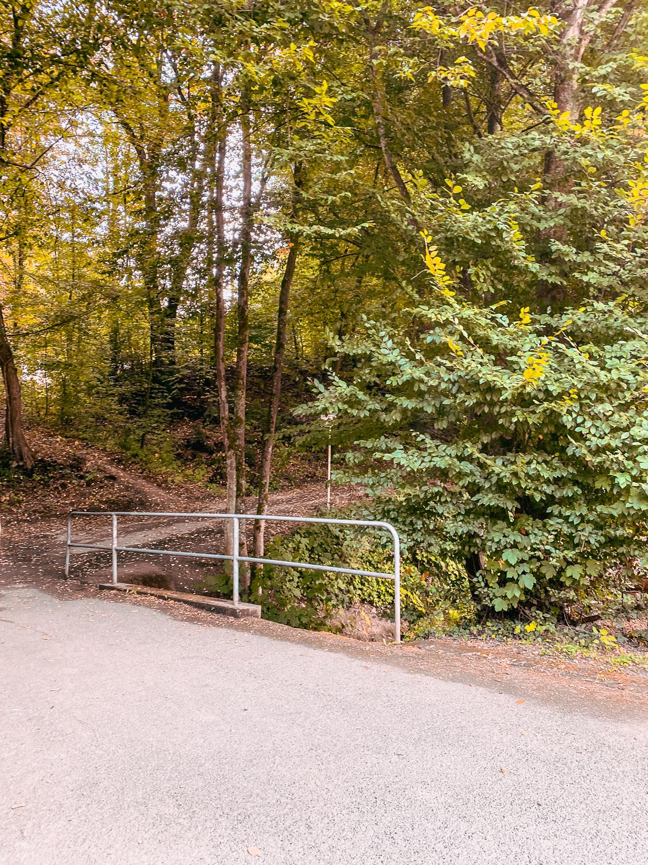 Wandern im Bergischen Land NRW Rundwanderweg Rüden Wanderroute einfach Wupper Reiseblog 3