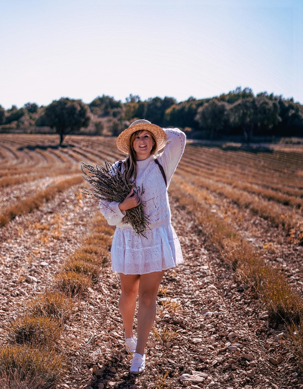 AROSA Flusskreuzfahrt Frankreich Ausflug Lavendelmuseum Lavendelfeld Reisebloggerin Brinisfashionbook