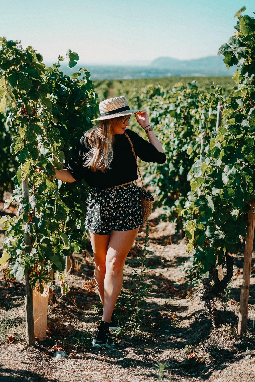 AROSA Flusskreuzfahrt Frankreich Ausflug Lyon L'Hermitage Weinfelder Weinprobe Weinwanderung Rhone Reiseblog 3