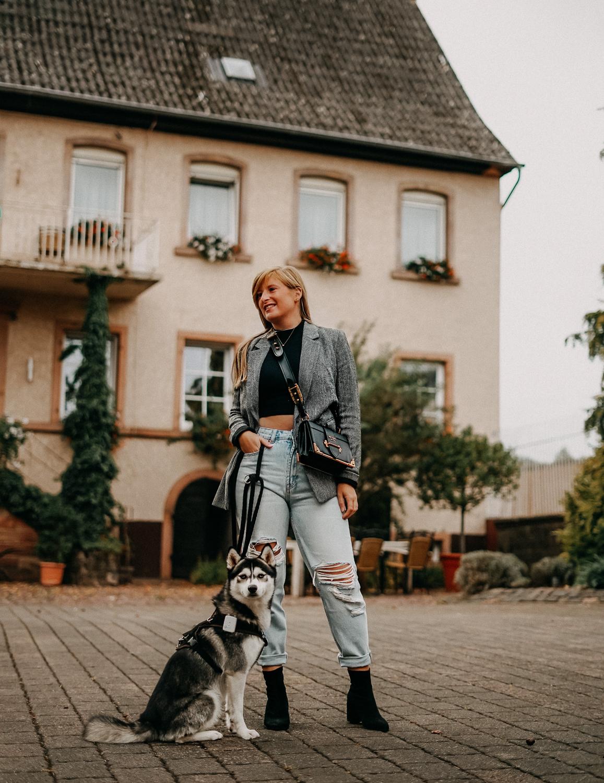 Reisen mit Hund Wochenendtrip Deutschland mit Hund Landidyll Hotel Klostermühle Pfalz Reiseblog Pomsky