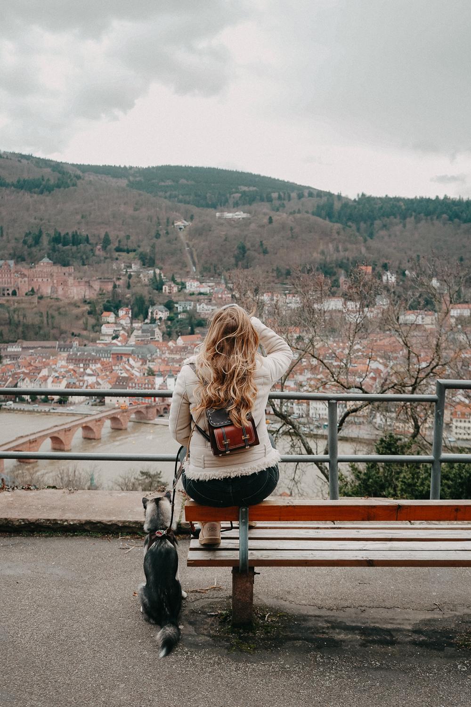Urlaub mit Hund 1 Woche Rundreise Route Heidelberg Hundeurlaub Urlaub Hund Deutschland Reiseblog Pomsky Philosophenweg Instagram Spot