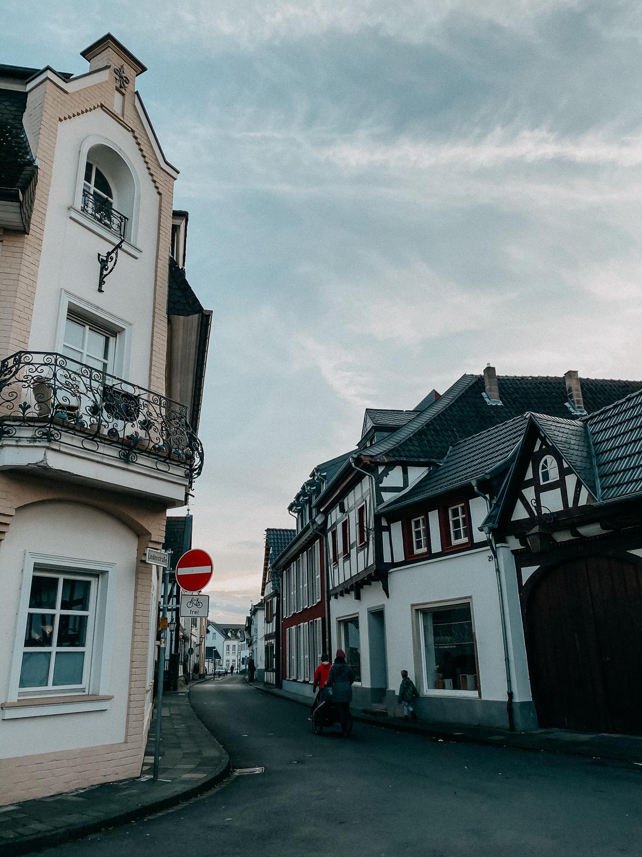 Bonn Wanderungen Beste Wanderroute Oberdollendorf Wandern mit Hund Ausflug NRW Reiseblog 5
