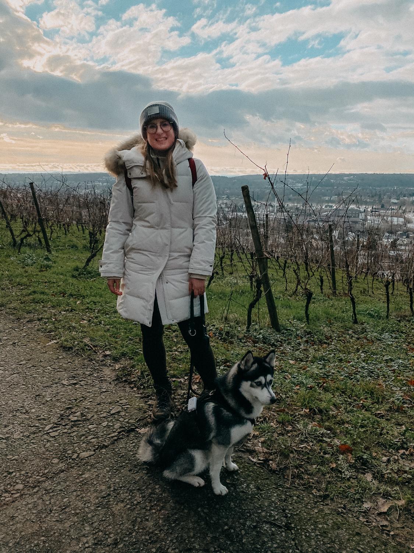 Bonn Wanderungen Beste Wanderroute Oberdollendorf Wandern mit Hund Weinbergewanderung Ausflug NRW Reiseblog 3