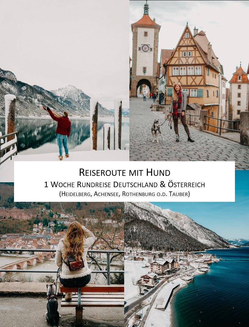 Reisen mit Hund Reiseroute Deutschland Österreich eine Woche Rothenburg Heidelberg Achensee 1