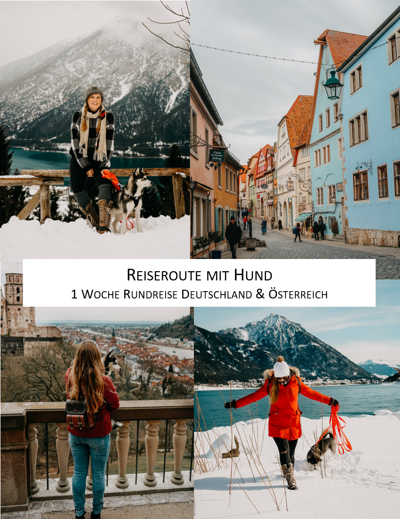 Reisen mit Hund Reiseroute Deutschland Österreich eine Woche Rothenburg Heidelberg Achensee