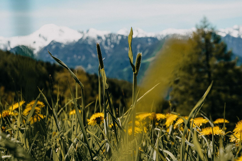 Urlaub Südtirol Tipps Wanderung beste Ausflüge Reiseblog